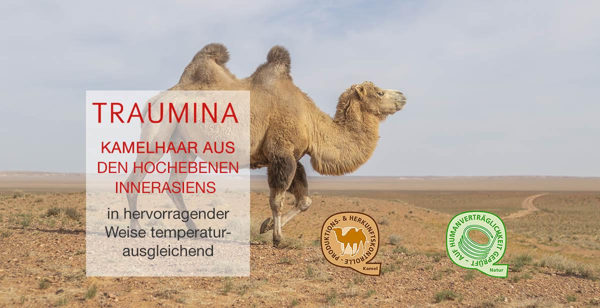 Traumina-Naturhaar-Kamelhaar-Bettdecken-nachhaltig-und-temperaturausgleichend