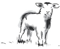 Joka-Materialkunde-Zeichnung-Schaf