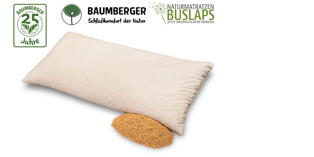 Baumberger-Hirse-Kopfkissen-kaufen