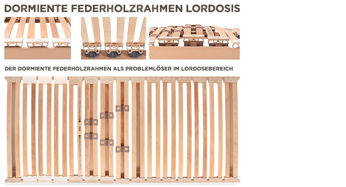 dormiente-Lordosis-Federholzrahmen-Variante-Kopf-Fuss-Verstellung