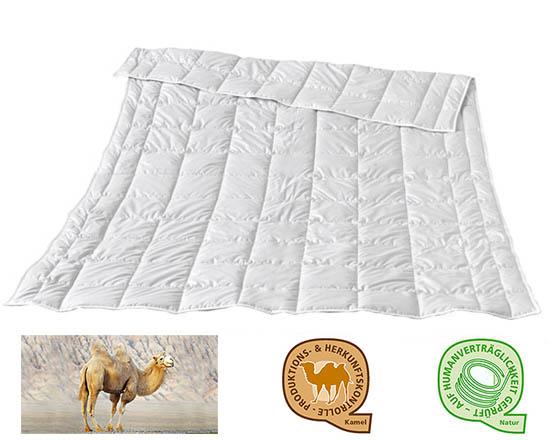 Traumina-Kamelhaardecke-Exclusive-Camel-Solo-Decke-Warmeklasse-WK-1