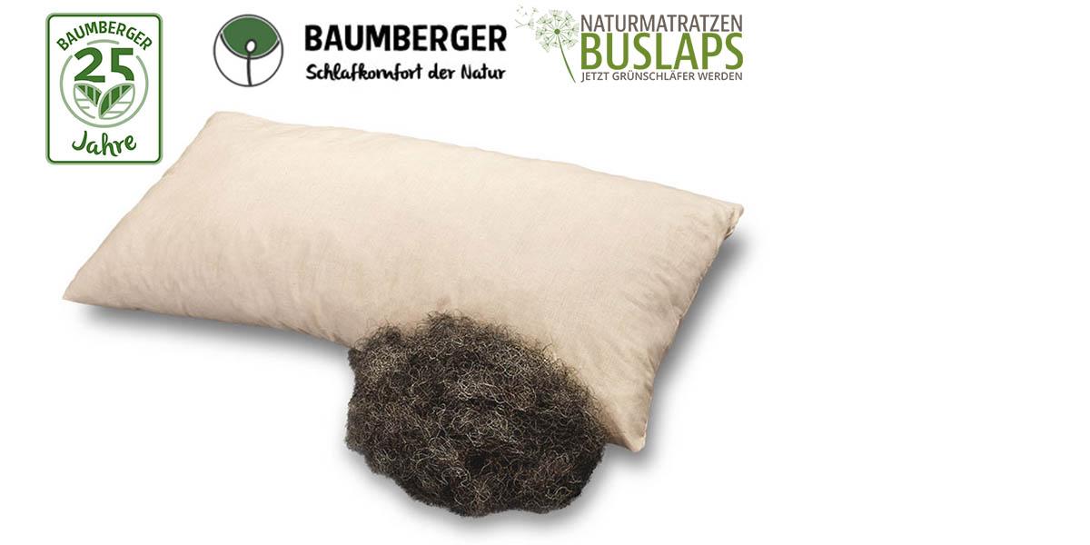 Baumberger-Rossa-Rosshaarkissen-kaufen